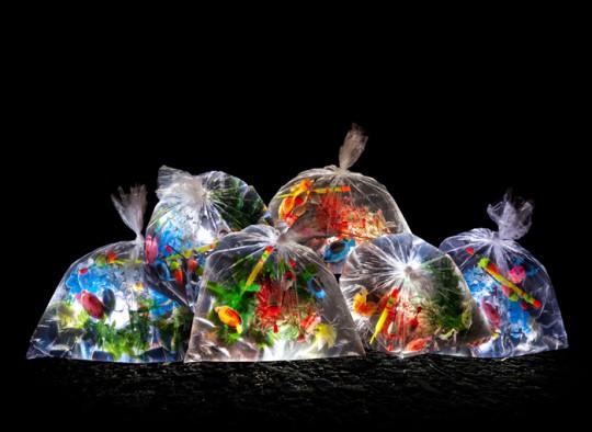 luzinterruptus-portable-river-aquarium