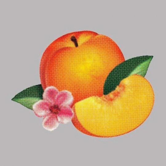 phoenix-bankrupt-930x930