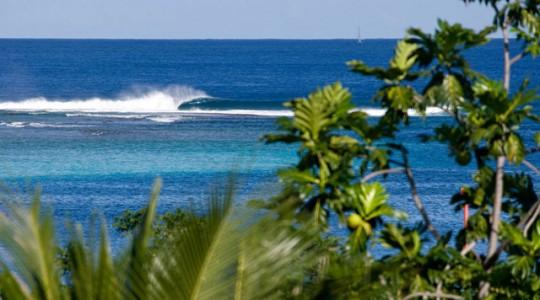 Restaurant-fiji-surfline